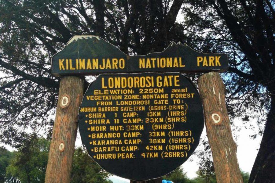 londorossi gate1