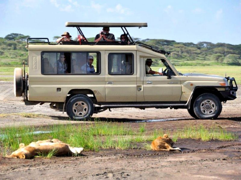 safarivehicle