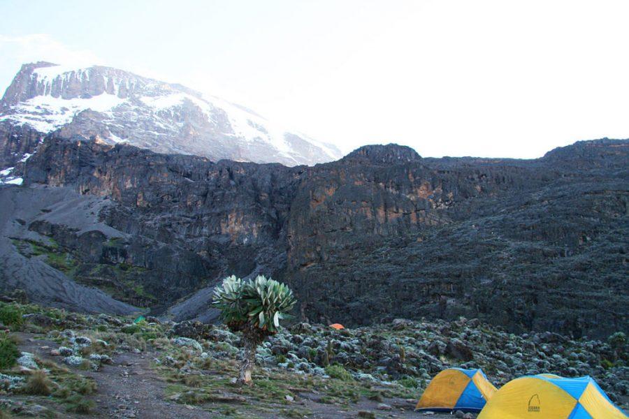 shira camp2