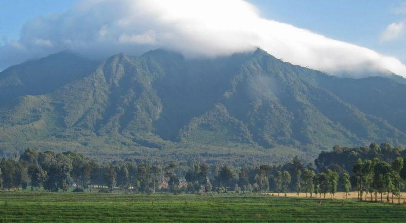 volcanoes-national park3